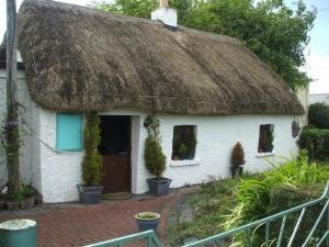 Own your own traditional Irish thatched cottage